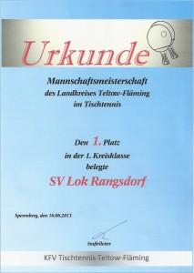 Urkunde 1. Platz Saison 2012/213