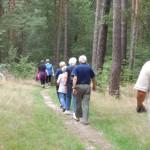 Frische Waldluft gratis