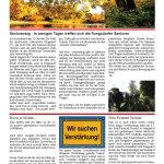 LOKführer-Ausgabe-3